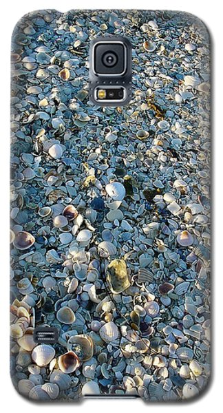 Galaxy S5 Case featuring the photograph Sand Key Shells by David Nicholls