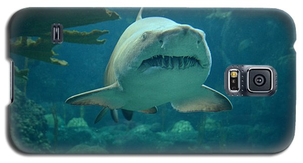 Galaxy S5 Case featuring the photograph Sand Shark by Robert Meanor