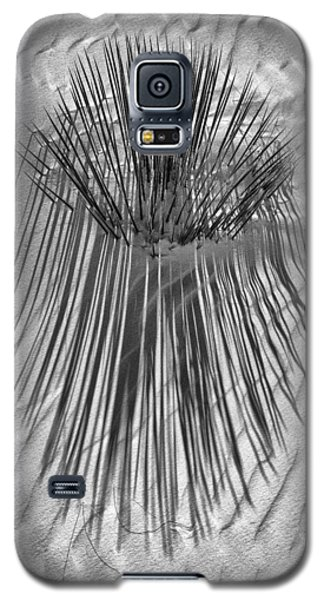 Sanded Yucca Galaxy S5 Case