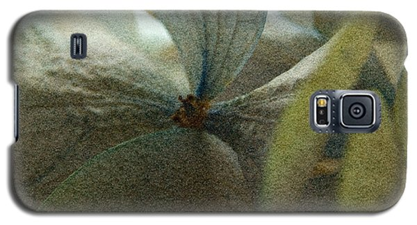Galaxy S5 Case featuring the photograph Sandflower by WB Johnston