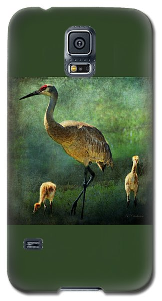 Sandhill And Chicks Galaxy S5 Case
