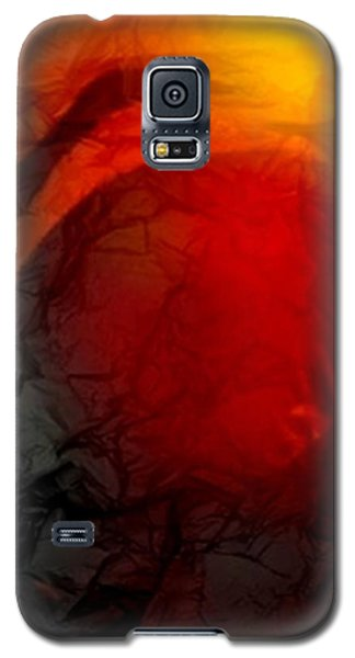 Sandhill Crane Dance 2 Galaxy S5 Case