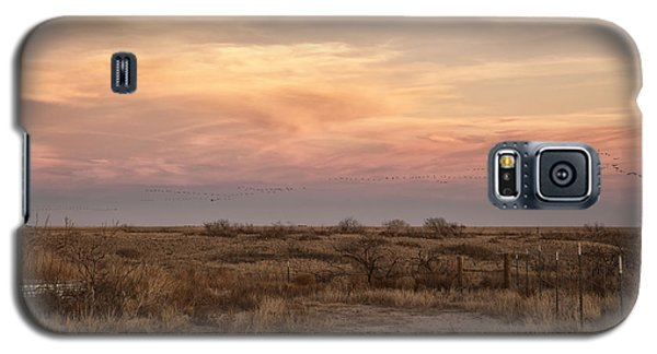 Sandhill Cranes At Sunset Galaxy S5 Case by Melany Sarafis