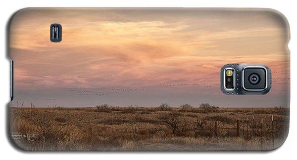 Sandhill Cranes At Sunset Galaxy S5 Case