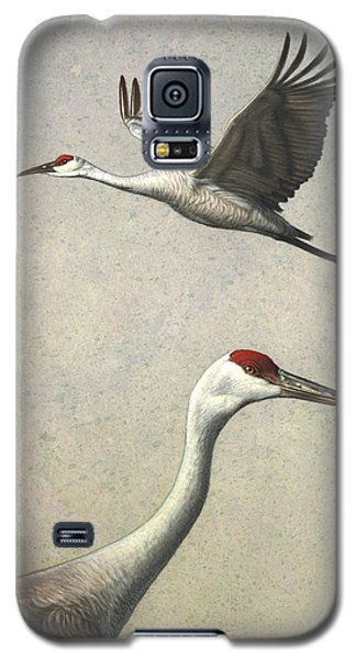 Sandhill Cranes Galaxy S5 Case by James W Johnson