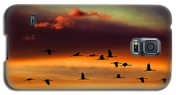 Galaxy S5 Case featuring the photograph Sandhill Cranes Take The Sunset Flight by Bill Kesler