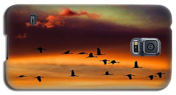 Sandhill Cranes Take The Sunset Flight Galaxy S5 Case by Bill Kesler