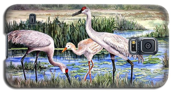 Galaxy S5 Case featuring the painting Sandhills By The Pond by Roxanne Tobaison