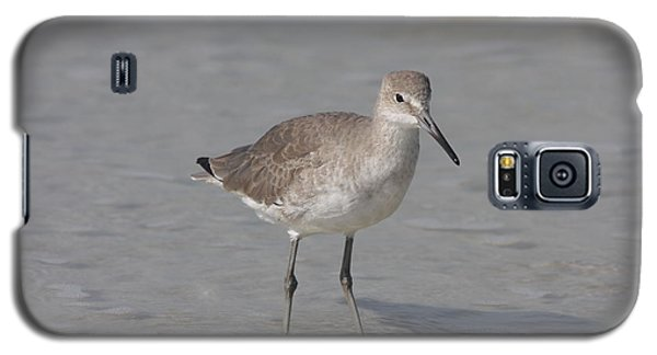 Galaxy S5 Case featuring the photograph Sandpiper by Christiane Schulze Art And Photography