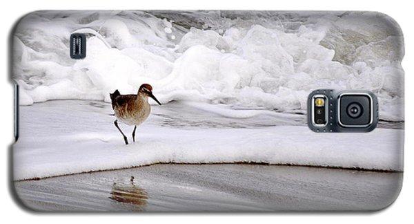 Sandpiper In The Surf Galaxy S5 Case