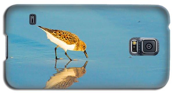Sandpiper Mirror Galaxy S5 Case by Susan Molnar
