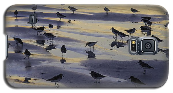 Sandpiper Sunset Convention Galaxy S5 Case