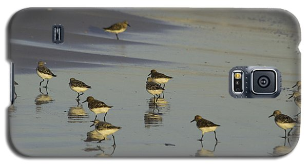 Sandpiper Sunset Reflection Galaxy S5 Case