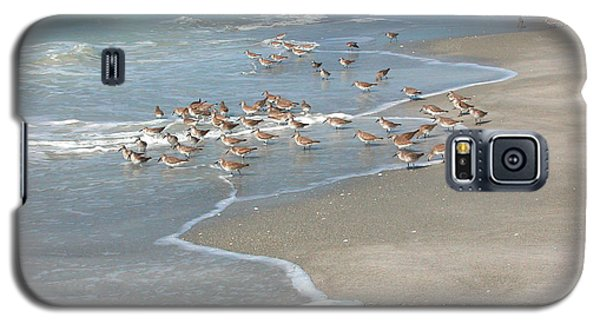 Sandpipers On The Beach Galaxy S5 Case by Mariarosa Rockefeller