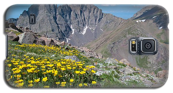 Sangre De Cristos Crestone Peak And Wildflowers Galaxy S5 Case