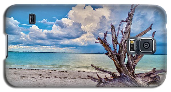 Galaxy S5 Case featuring the photograph Sanibel Island Driftwood by Timothy Lowry