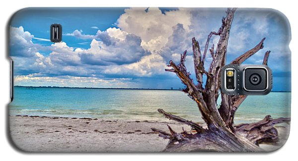 Sanibel Island Driftwood Galaxy S5 Case