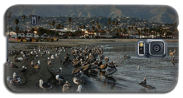 Galaxy S5 Case featuring the photograph Santa Barbara Beach Crowd  by Georgia Mizuleva