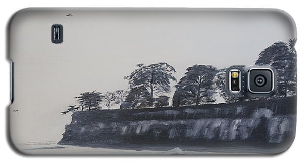 Santa Barbara Shoreline Park Galaxy S5 Case by Ian Donley