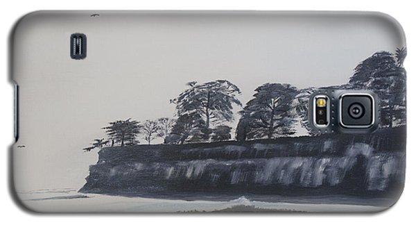 Santa Barbara Shoreline Park Galaxy S5 Case