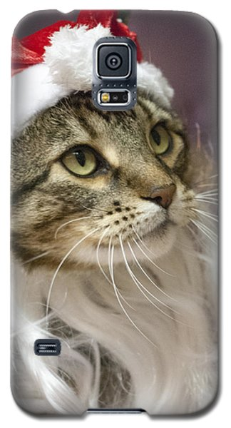 Santa Cat Galaxy S5 Case