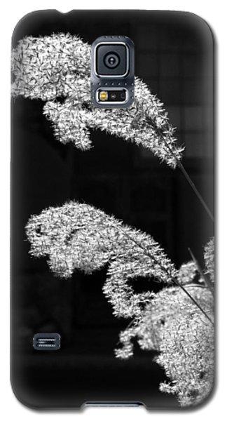 Santa Fe Feather Duster Galaxy S5 Case