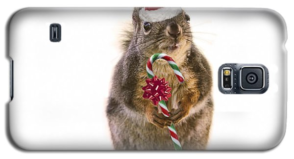 Santa Squirrel And Candy Cane Galaxy S5 Case by Peggy Collins