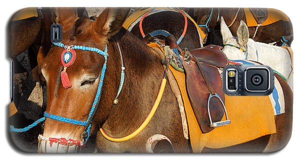 Galaxy S5 Case featuring the photograph Santorini Donkeys Ready For Work by Colette V Hera  Guggenheim
