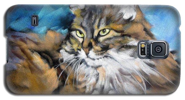 Sapphira 2 Galaxy S5 Case by Rae Andrews