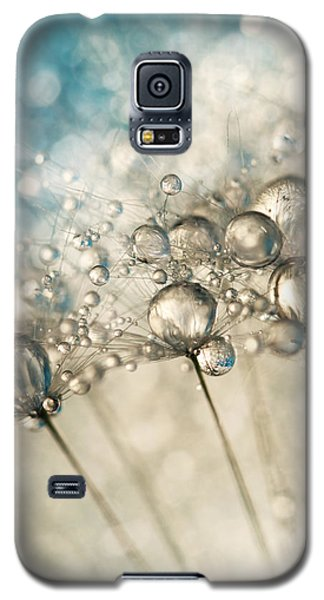 Sapphire And Silver Sparkle Galaxy S5 Case