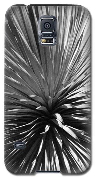 Sapphire Skies 2 Galaxy S5 Case by Ellen Henneke