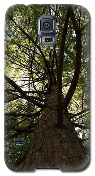 Sarasota Spiral  Galaxy S5 Case