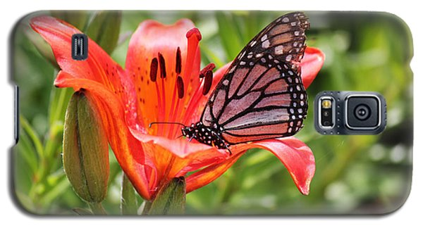 Saskatchewan Prairie Lily And Butterfly Galaxy S5 Case