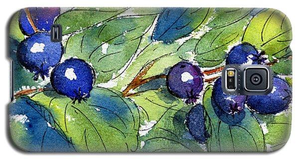 Saskatoon Berries Galaxy S5 Case by Pat Katz