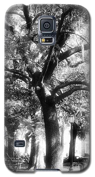 Savannah Oak Galaxy S5 Case