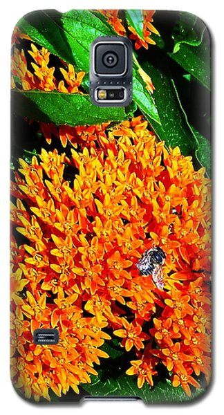 Save Our Bees Galaxy S5 Case by Yolanda Raker