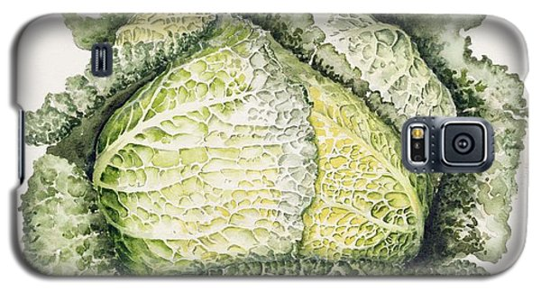 Savoy Cabbage  Galaxy S5 Case by Alison Cooper