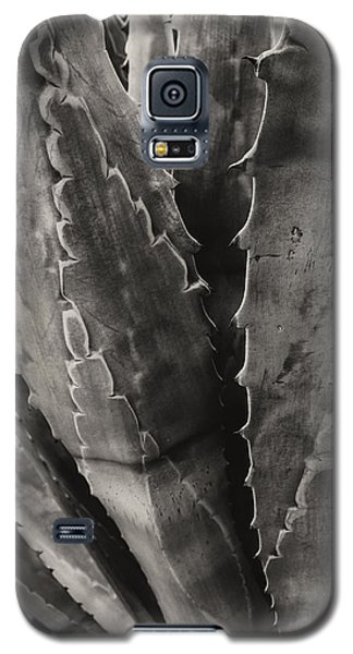 Galaxy S5 Case featuring the photograph Saw It by Glenn DiPaola