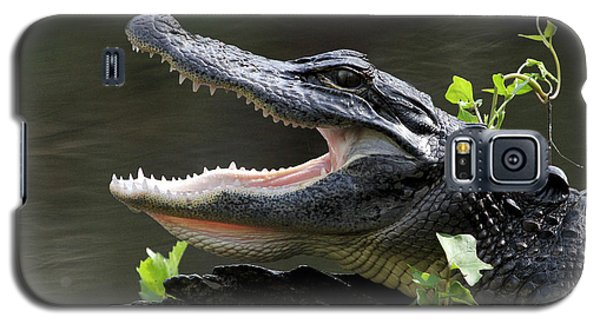 Say Aah - American Alligator Galaxy S5 Case
