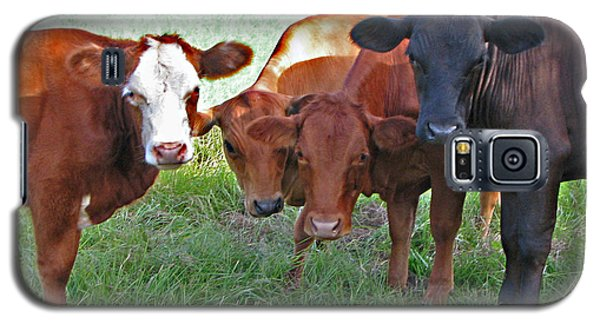 Say Moooooo 6377 Galaxy S5 Case