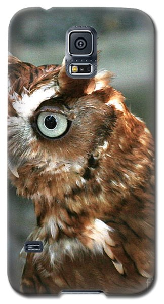 Says Who? Galaxy S5 Case