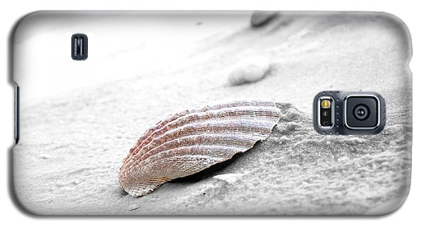Galaxy S5 Case featuring the photograph Scallop Shell by Robert Meanor
