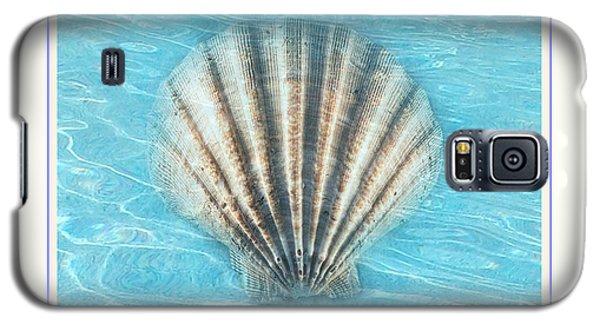 Scallop Underwater Galaxy S5 Case by Linda Olsen