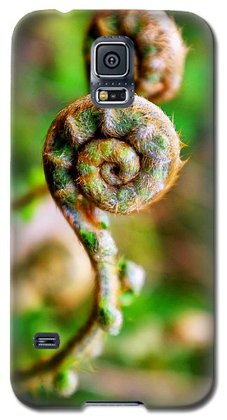 Galaxy S5 Case featuring the photograph Scaly Male Fern Frond by Fabrizio Troiani