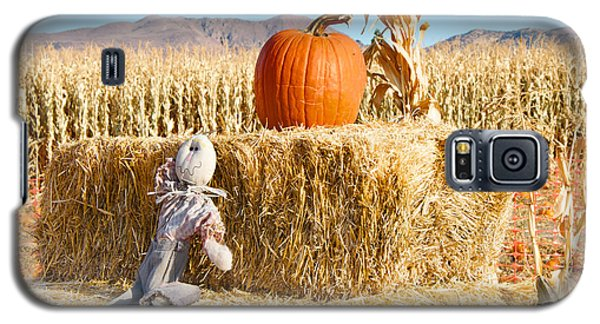 Galaxy S5 Case featuring the photograph Scarecrow Breaktime by Vinnie Oakes