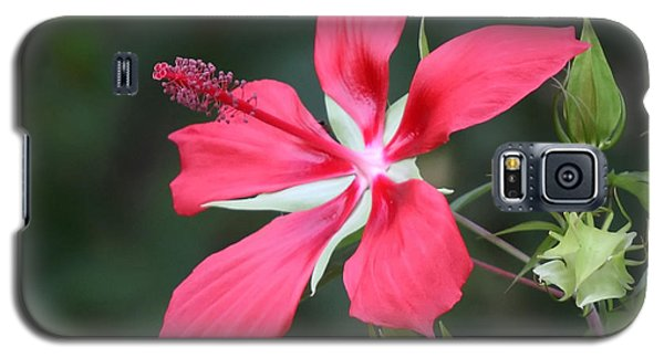 Scarlet Hibiscus #3 Galaxy S5 Case
