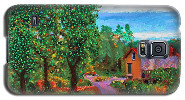 Scene From Giverny Galaxy S5 Case