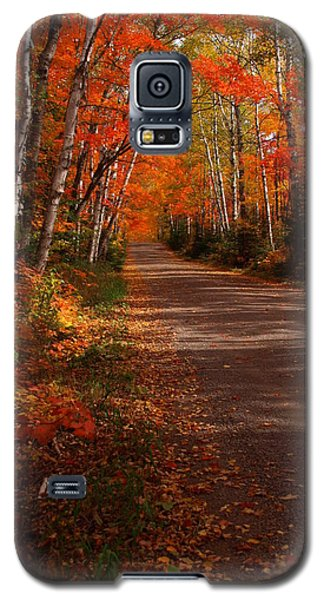 Scenic Maple Drive Galaxy S5 Case by James Peterson