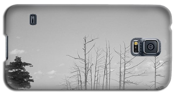 Galaxy S5 Case featuring the photograph Scenic Swamp Cypress Trees Black And White by Joseph Baril
