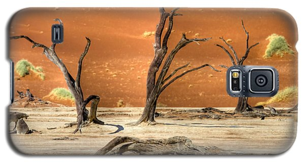 Galaxy S5 Case featuring the photograph Scenic View At Sossusvlei by Juergen Klust